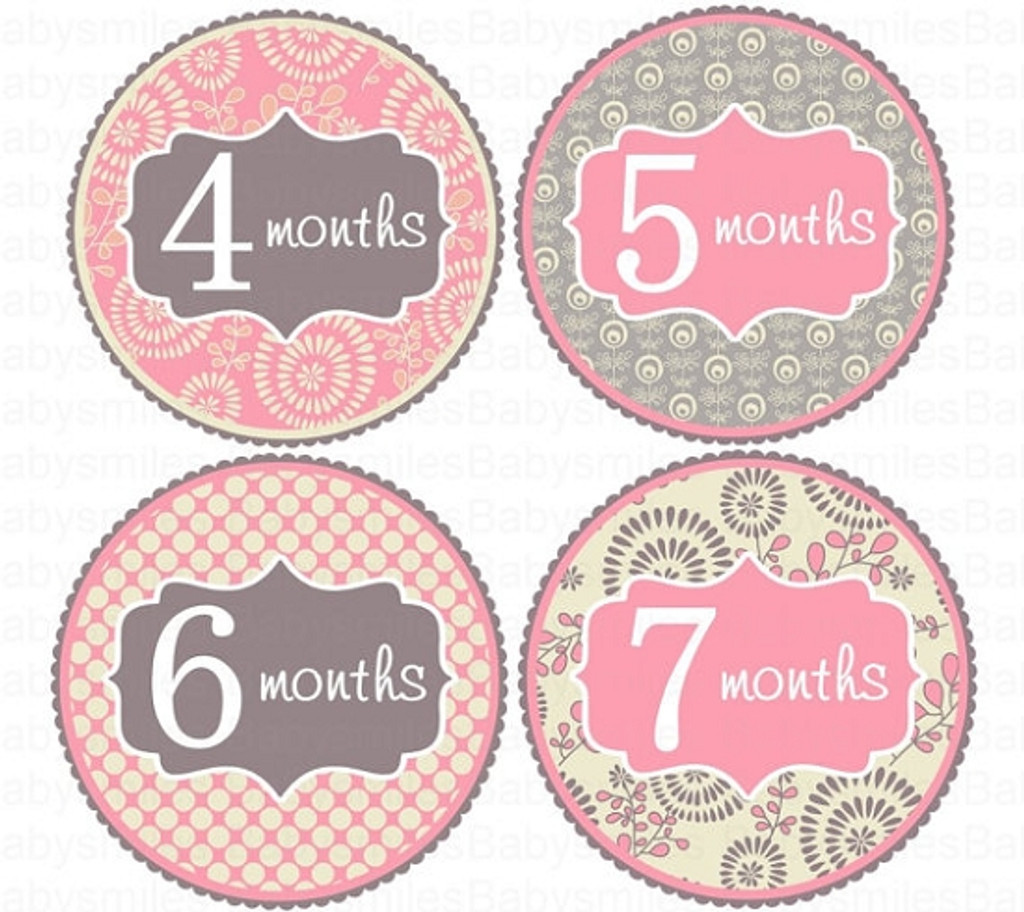 Baby Monthly Photo Stickers: Flower Girl