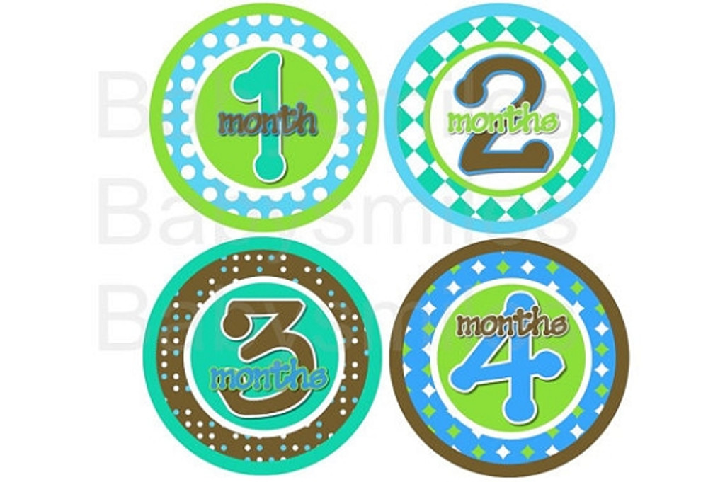 Baby Monthly Photo Stickers: Blue and Green Retro