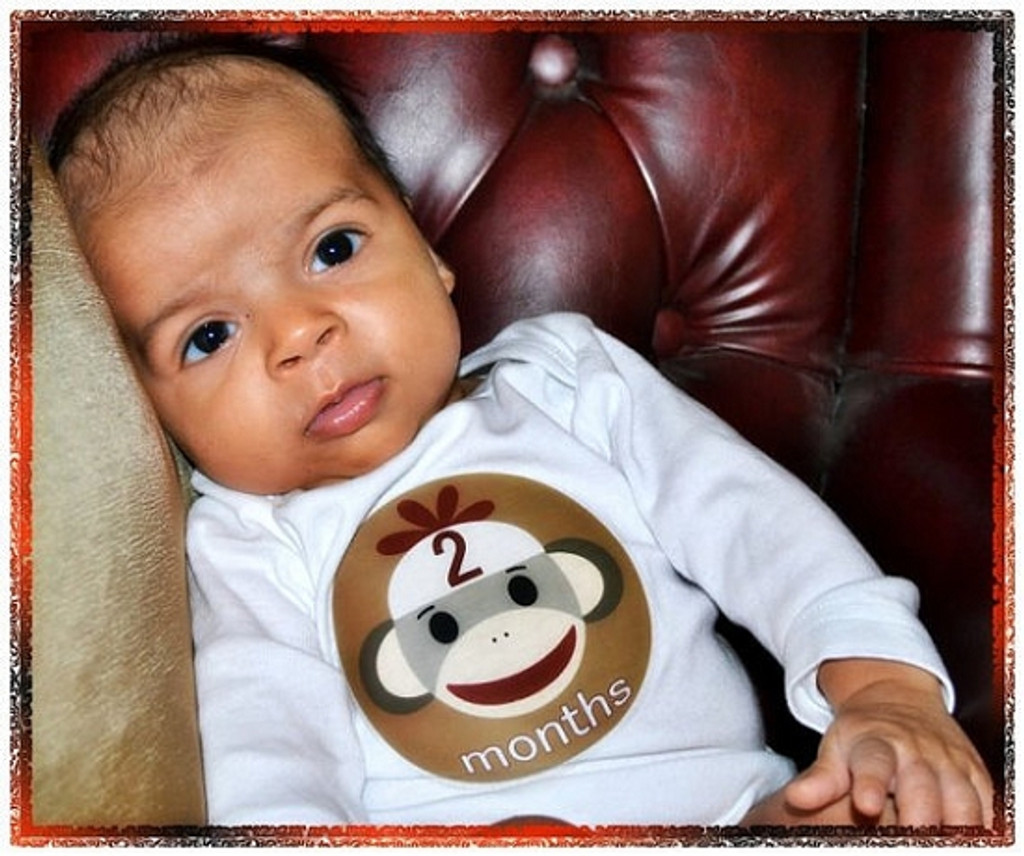 Baby Monthly Photo Stickers: Sock Monkey Collection