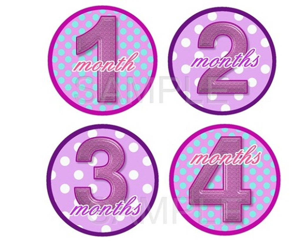 Baby Monthly Photo Stickers: Purple Baby