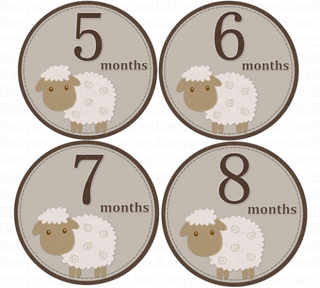 Baby Monthly Photo Stickers: Sheep Collection
