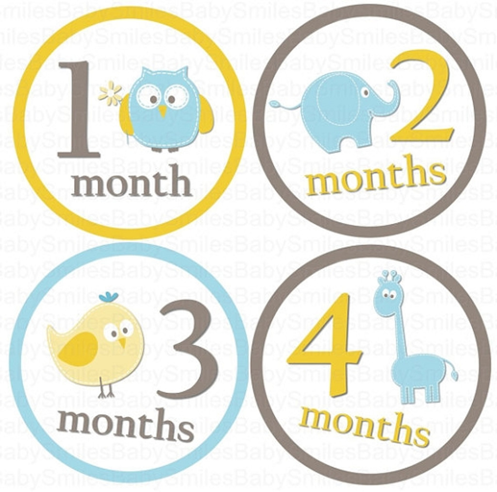 Baby Monthly Photo Stickers: Blue Baby Animals