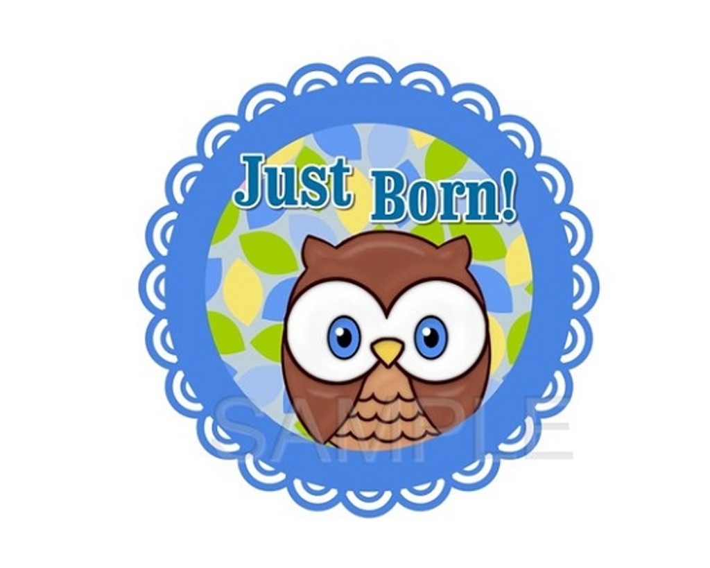 Baby Monthly Photo Stickers: Blue Baby Owl