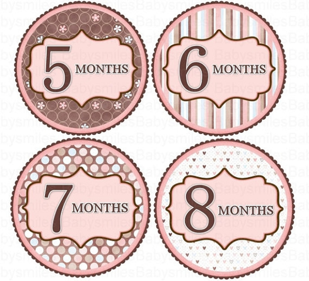 Baby Monthly Photo Stickers: Sweet Pink Collection