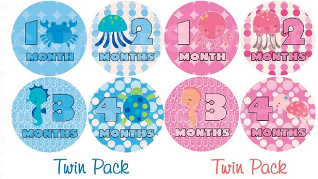 Baby Monthly Photo Stickers: Boy/Girl Twin Sea Set