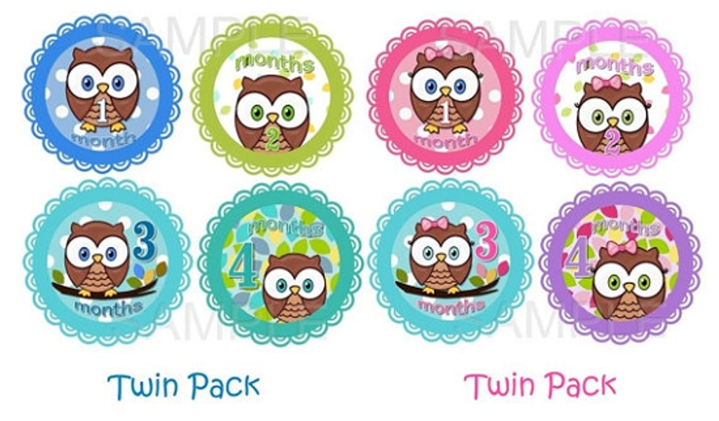 Baby Monthly Photo Stickers: Boy/Girl Twin Baby Owl Set