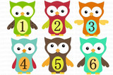 Baby Monthly Photo Stickers: Owl Design