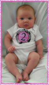 Baby Monthly Photo Stickers: Pink Paisley