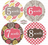 Baby Monthly Photo Stickers: Modern Berry