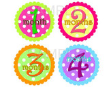Baby Monthly Photo Stickers: Polka Dot Collection