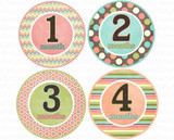 Baby Monthly Photo Stickers: Retro Girlie Collection