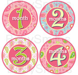 Baby Monthly Photo Stickers: Girlie Paisley