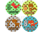 Baby Monthly Photo Stickers: Forest Collection
