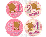 Baby Monthly Photo Stickers: Pink Bear Design