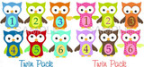 Baby Monthly Photo Stickers: Boy/Girl Twin Owl Set
