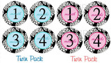 Baby Monthly Photo Stickers: Boy/Girl Twin Paisley Set