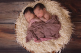 Six Interesting Facts About Twins