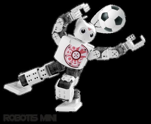 ROBOTIS MINI[INTL]