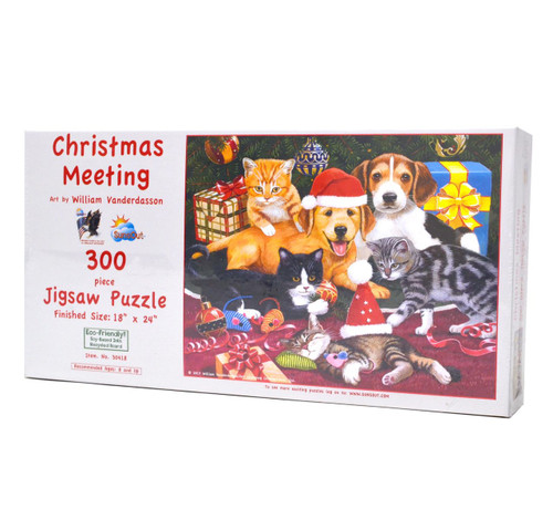 Christmas Meeting Puzzle