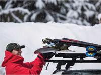 fatcat evo snowboard