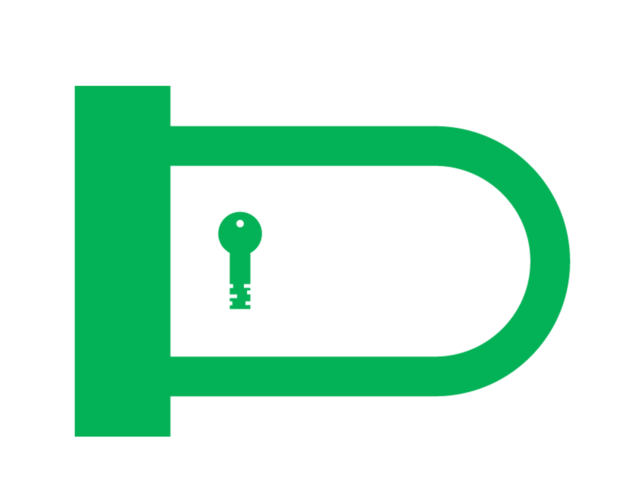 Locks & Security Accessories