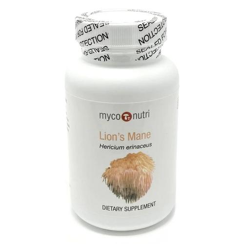 Lion's Mane 100 gram Powder