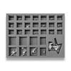 Age of Sigmar Hedonites of Slaanesh Sigvald 22 Archers 9 Fiendbloods Foam Tray (BFL-2.5)