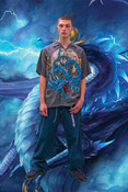 Vintage Grey And Blue Dragon Shirt