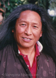 Lama Tharchin Rinpoche Long Hair Photo