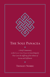 The Sole Panacea (Hardcover)