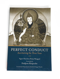 Perfect Conduct
