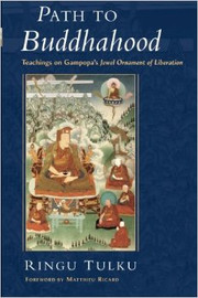 Path to Buddhahood: Teachings on Gampopa's Jewel Ornament of Liberation by Ringu Tulku