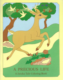 A Precious Life / The Magic of Patience: A Jataka Tale Coloring Book, illustrated by Rosalyn White