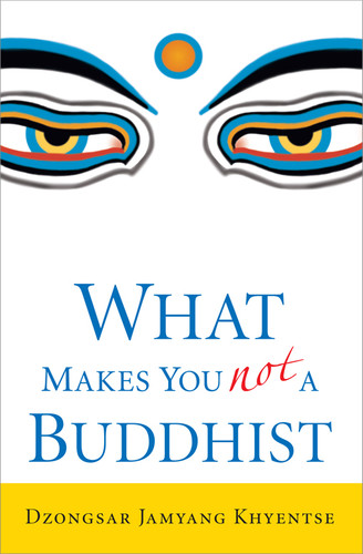 What Makes You Not A Buddhist (paperback)