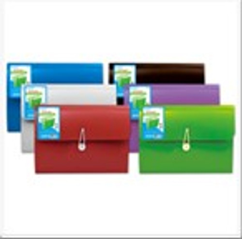13 Pocket Expanding File Folder Asst