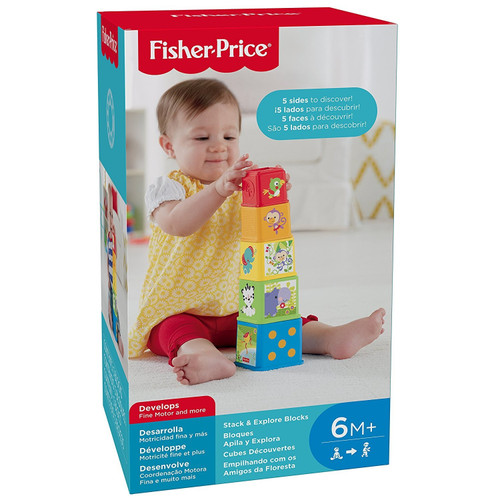Fisher Price Stack 'n Explore Blocks