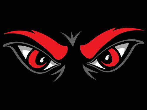 Cincinnati Bearcats Multi-Use 3x4 Eyes Decal
