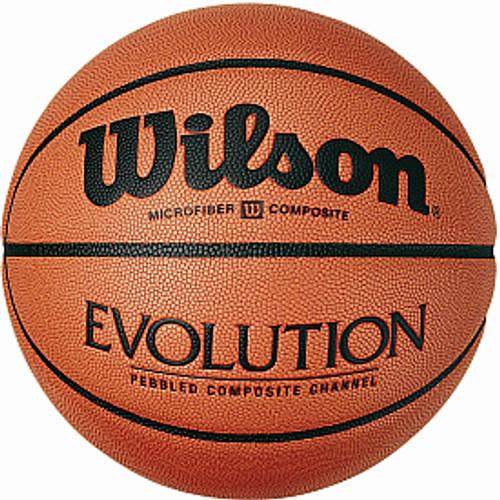 Wilson Evolution Indoor Basketball
