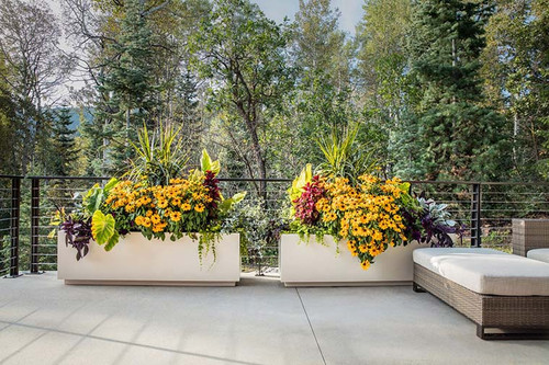 5 Reasons to  Choose Aluminum Planters for Your Yard, Deck, or Patio