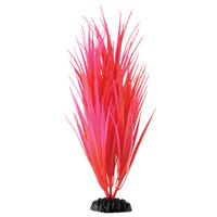 "RA  Rose Nile Grass - 11.5"""