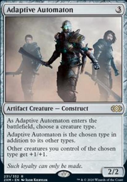 Adaptive Automaton (231 of 384)