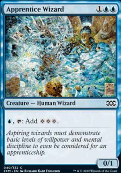 Apprentice Wizard (40 of 384) - Foil