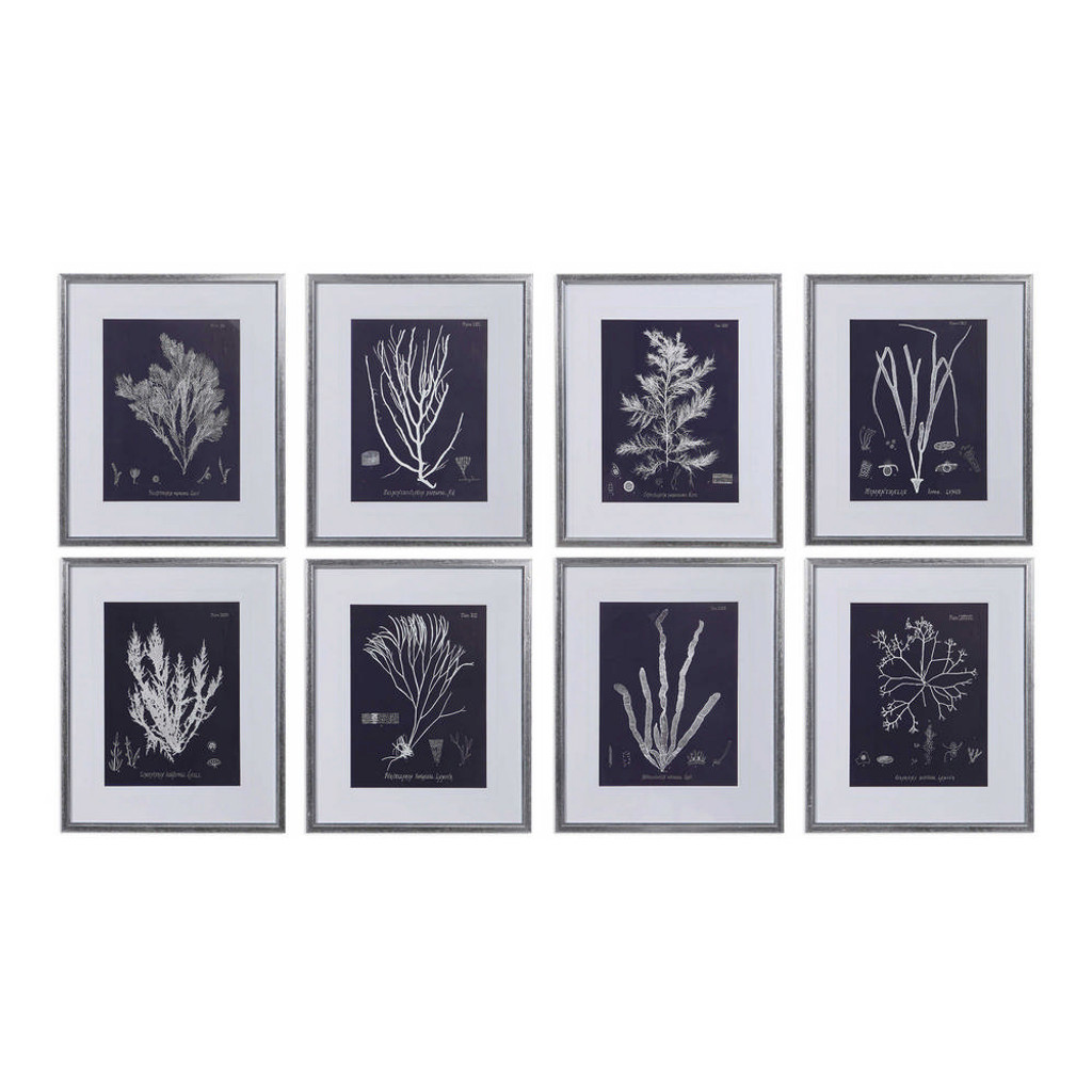 Coral on Navy Framed Prints S/8 by Uttermost
