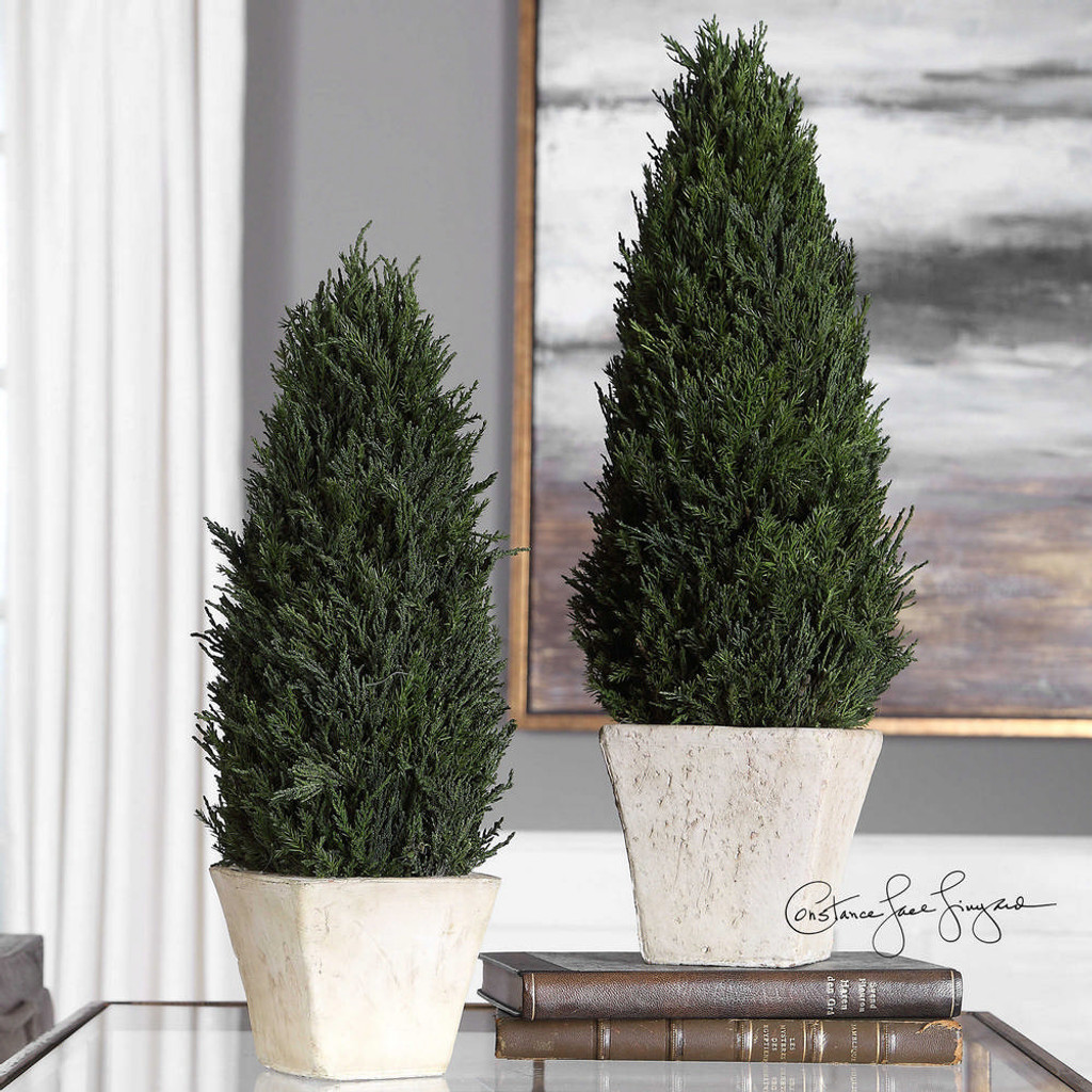 Cypress Cone Topiaries S/2 by Uttermost