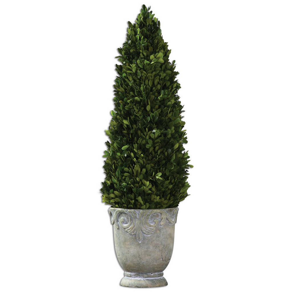 Preserved Boxwood Cone Topiary by Uttermost