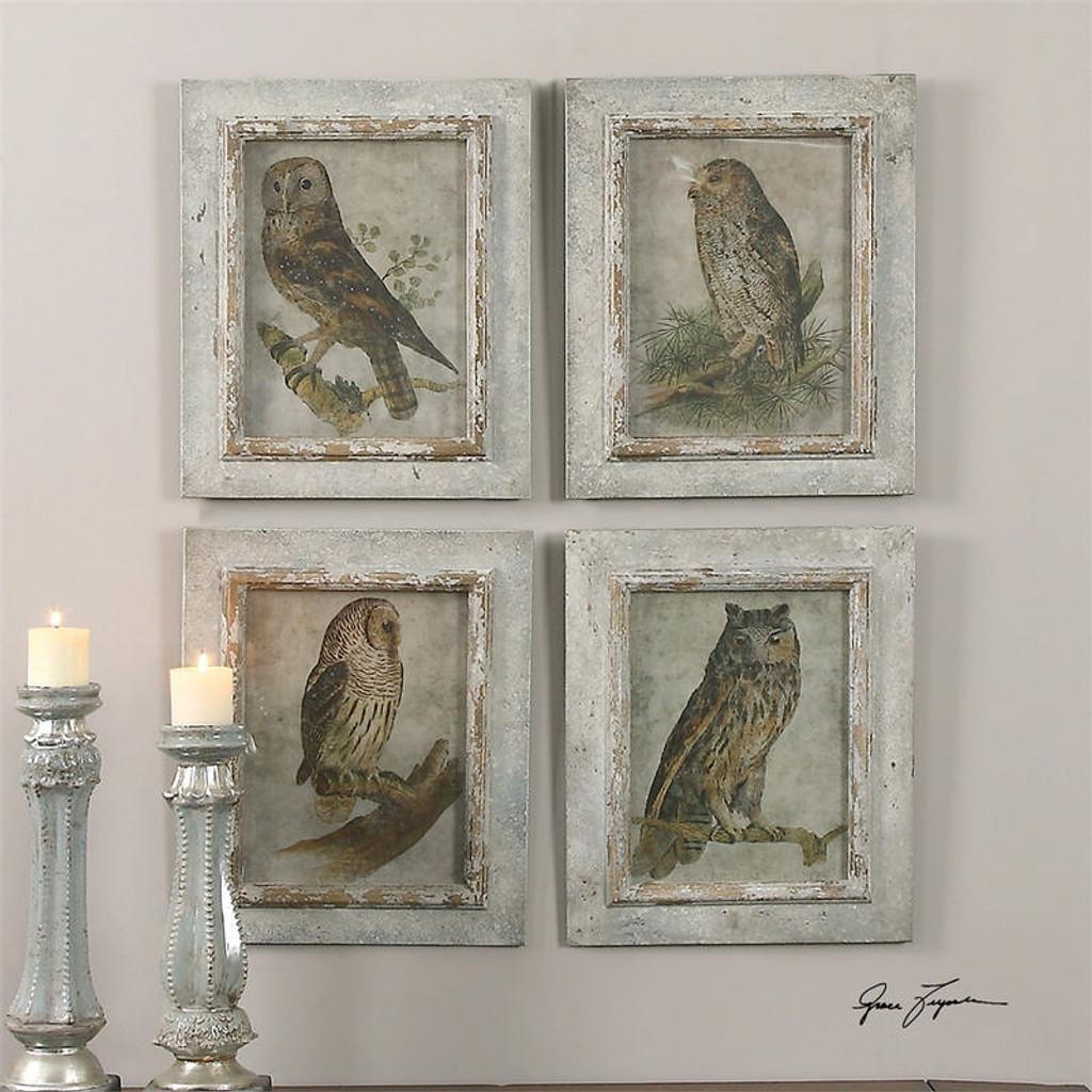 Owls Set of 4 a Prints Framed by Uttermost