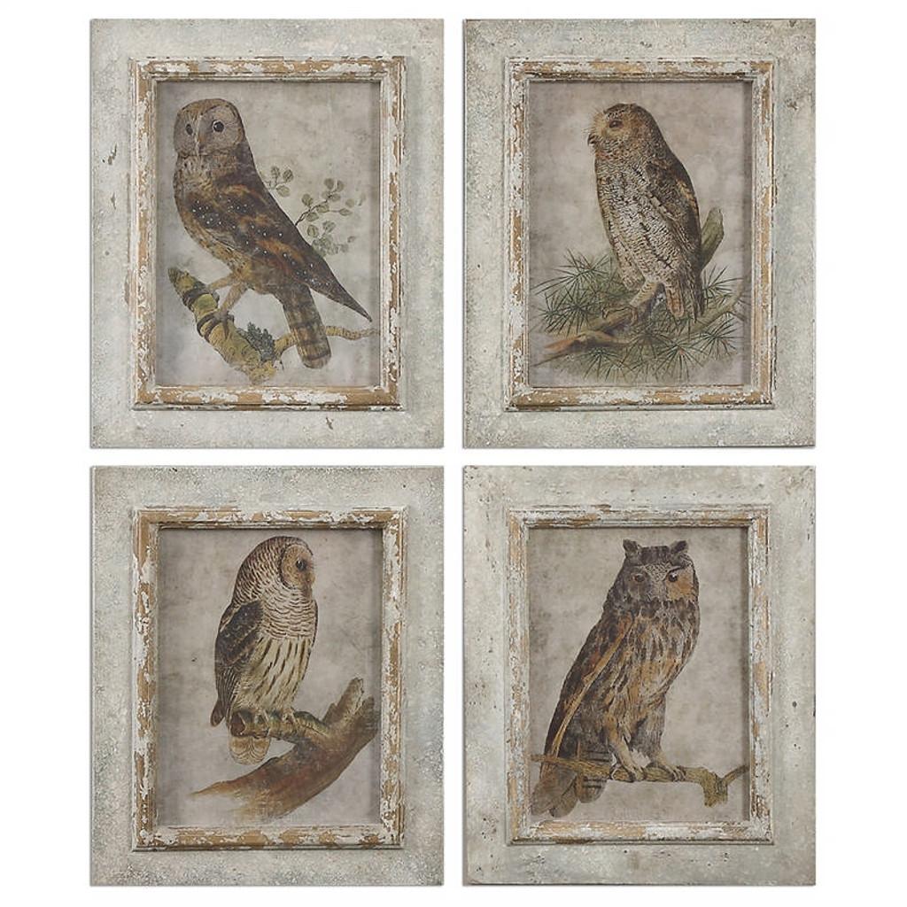 Owls Set of 4