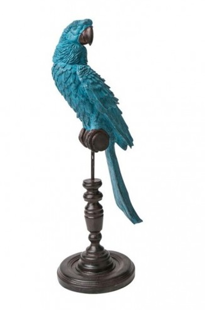 Ornamental Parrot - Petrol