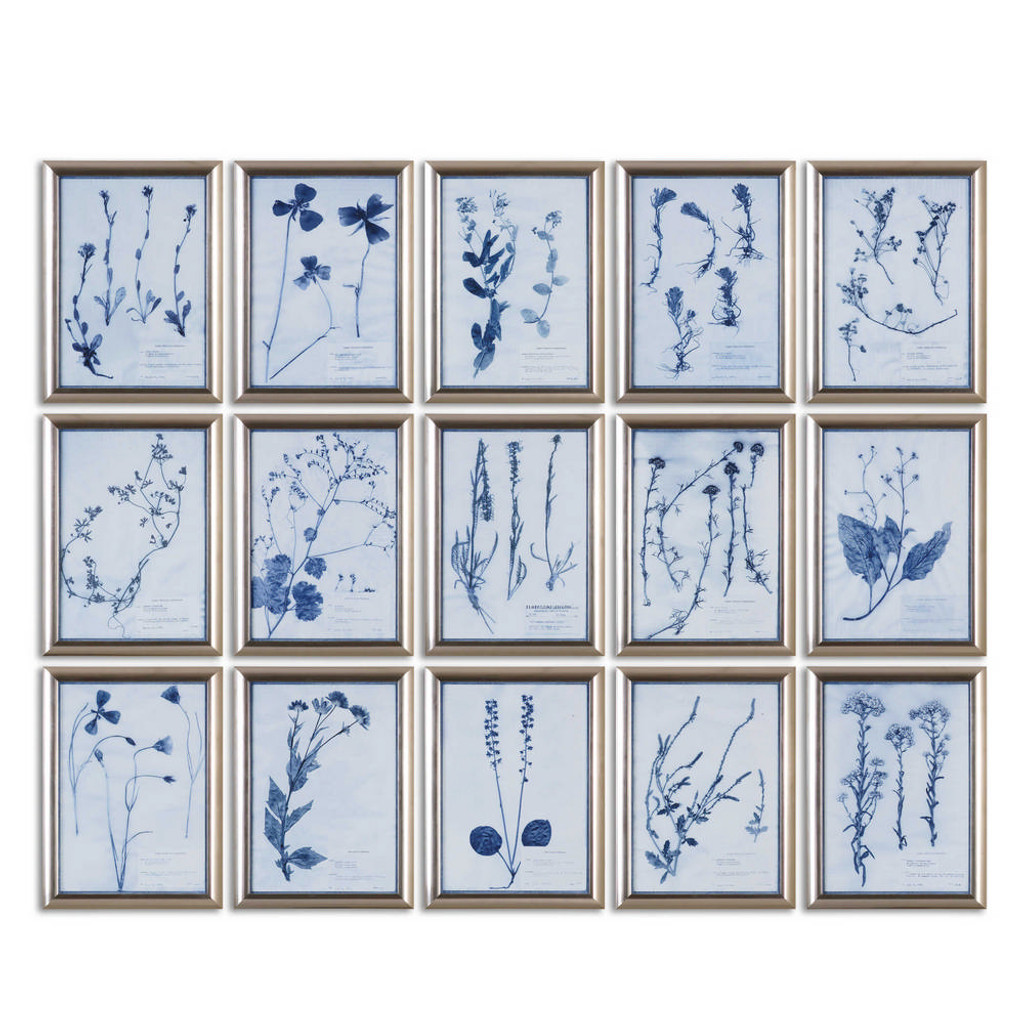 Dried Flowers Framed Prints S/15 by Uttermost