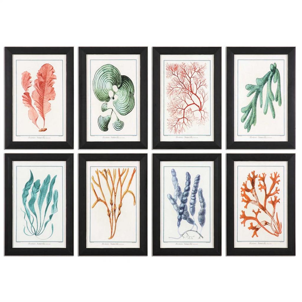Colorful Algae Set/8 - Framed Artwork